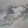 "Atlantic Grey 12""x24"" Polished Marble Tile"