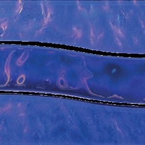 Border Cobalt Wave